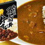 甘くて美味しい肉汁たっぷり 九州産 黒毛和牛 牛すじカレー