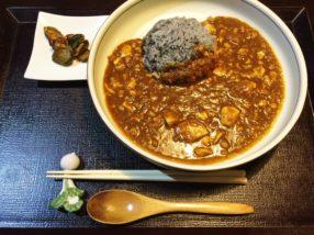 見た目が少し麻婆豆腐。豆腐と納豆(?)が入ったカレー。