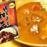 佐賀県産和牛カレー 大きな具がコロコロ入ったレトルトカレー