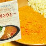少し塩辛い カレー風味の担々麺 四川坦々カレー