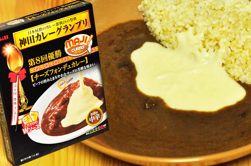 MAJICURRY チーズフォンデュカレーパッケージ