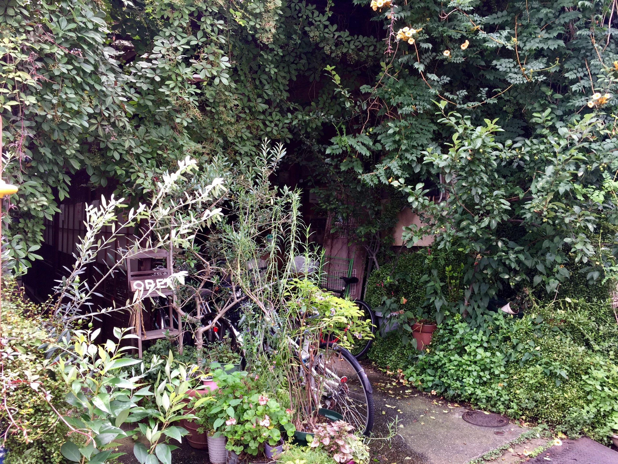 押上 生い茂るスパイスカフェの入り口